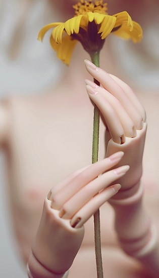 1/4 Joint Hands