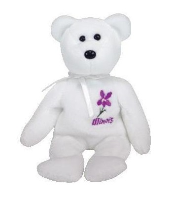 Illinois Violet the bear
